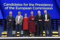 Pobednici i gubitnici izbora za Evropski parlament