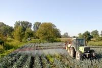 Članstvo Srbije u Evropskoj uniji znači nove šanse za poljoprivredu i industriju